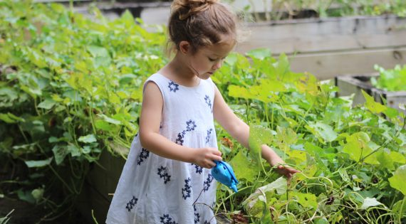 3 Easy Plants Kids Can Grow And Eat